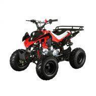 Купить в Санкт-Петербурге детский бензиновый квадроцикл BC XS110