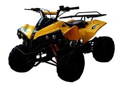 Купить в Санкт-Петербурге детский бензиновый квадроцикл RaZoR 125cc 8'