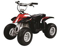 Купить в Санкт-Петербурге не дорогой детский электроквадроцикл Razor Drit Quad