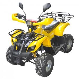 Купить в Санкт-Петербурге детский квадроцикл Armada ATV50B